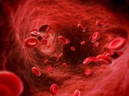 przeplyw krwi images 512x320