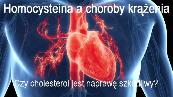 homocysteina 560x315
